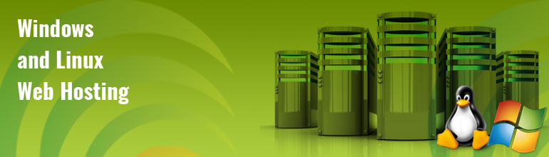 Windows and Linux Web Server Hosting