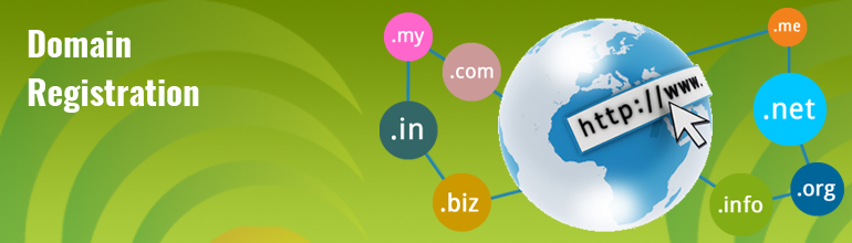 Domain Registration Provider